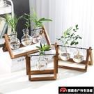 水培綠蘿玻璃花瓶容器盆室內桌面綠植擺件裝...