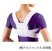 護具 護背 - 老人用品 銀髮族 挺胸束帶 安定保護軀幹 駝背者也適用 日本製 [ALphax]