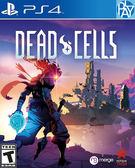 PS4-死亡細胞 中文版 PLAY小無電玩