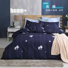 【BEST寢飾】雲絲絨 鋪棉兩用被床包組 單人 雙人 加大 特大 均一價 夜喵 舒柔棉 台灣製造
