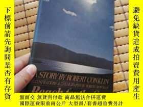 二手書博民逛書店Reach罕見for the Sun,精裝,英文原版,無字跡劃線