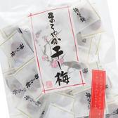 日本無籽梅乾 160g 酸甜梅子乾 無籽