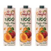 (組)土耳其meysu 100%杏桃蘋果汁1L 3入組