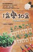 (二手書)1盆變10盆扦插種植活用百科