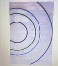 [COSCO代購] W131935 比利時進口超現代地毯 200 X 290公分 - 圈圈