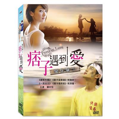 愛在墾丁 痞子遇到愛DVD 林逸欣/姚淳耀