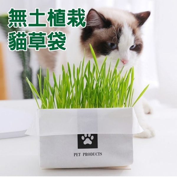 *KING WANG*PET PRODUCTS《無土植栽貓草袋》環保無農藥栽培 加水即可