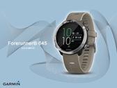 【時間道】GARMIN -預購- 贈鋼化防爆膜 Forerunner 645 感應式支付GPS心率腕錶-灰色 免運費