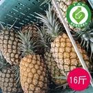 ●纖維細緻 ●甜度高不咬舌,含豐富維生素C ●產銷履歷驗證通過 ●希望廣場直播熱賣商品