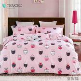 ☆吸濕排汗法式柔滑天絲☆ 特大 鋪棉床包兩用被四件組(加高35CM)《皇冠貓》
