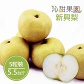 沁甜果園SSN.苗栗卓蘭新興梨(5.5台斤,5粒裝)﹍愛食網