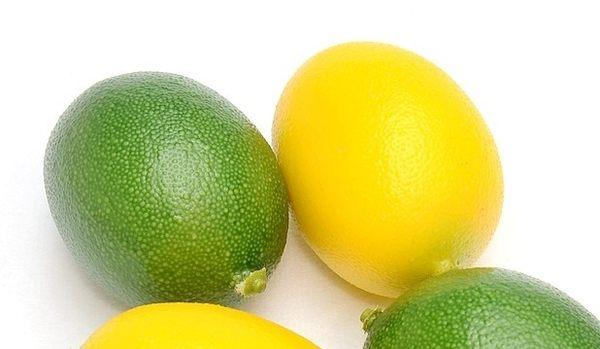 [協貿國際]仿真水果蔬菜蔬果模型整套價(10個1套)