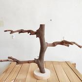鸚鵡葡萄木站桿玄鳳鳥站杠磨爪棒磨嘴磨牙棒站棍玩具站臺鳥具用品