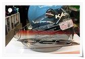 海鳥牌安全帽,PN781專用鏡片