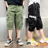 男童七分褲薄款中大童褲子兒童工裝短褲休閒寬松【淘嘟嘟】