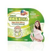 孕哺兒Ⓡ媽媽藻油軟膠囊DHA(60粒)