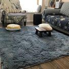 地毯可水洗絲毛地毯客廳沙發臥室床邊可愛家...