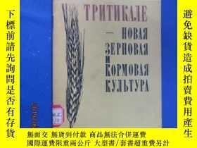 二手書博民逛書店外文版;罕見新的谷物和飼料——小黑麥Y15969 出版1981