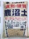 日本 硬質鹿沼土 適合多肉植物 土壤改良 酸性植物 高級園藝用土 大包裝 - 中粒