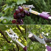 高枝剪園林樹枝果樹水果剪刀高空采果摘果器伸縮修枝鋸樹剪摘果剪