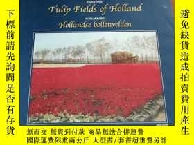 二手書博民逛書店Tulip罕見fields of Holland = Holla