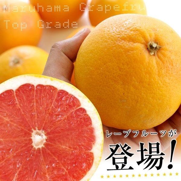 【果之蔬-全省免運】夏日每日C水果-【葡萄柚+無籽檸檬】X5台斤±10%