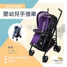 兩色可選 台灣製 雙向可躺輕便嬰幼兒手推車 嬰兒車 統姿