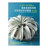 雜貨風綠植家飾(空氣鳳梨栽培圖鑑118)