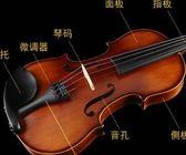 初學者成人兒童入門演奏學生用純手工實木樂器 愛麗絲精品igo