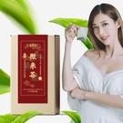 2370熟香烏龍 微米茶 (玉米纖維茶包/台灣茶) 【新寶順】