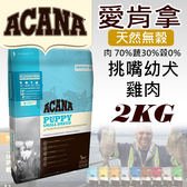 [寵樂子]《愛肯拿 Acana》挑嘴幼犬配方 - 放養雞肉 + 新鮮蔬果 2kg/狗飼料
