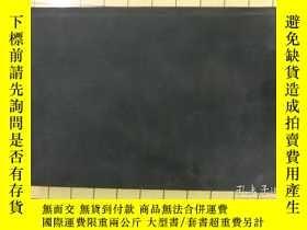 二手書博民逛書店HOLDING罕見COURT(精裝)Y6279 DICK VIT