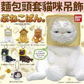 【zoo寵物商城】dyy》現貨趣味麵包頭套貓咪加菲布偶貓鑰匙圈扭蛋整套