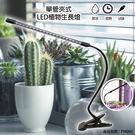 植物燈 植物燈管 多肉植物led LED 單管 植物生長燈 led 燈具 植物led燈 植物燈推薦