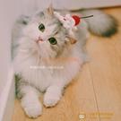 新品貓咪狗狗櫻桃蛋糕帽子可愛手工編織寵物圍脖針織頭飾【小獅子】