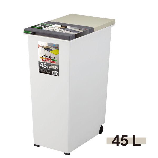 日本ASVEL-EBAN雙邊掀蓋式垃圾桶-45L / 廚房寢室客廳 分類輪子 台北市專用垃圾袋33公升