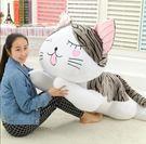 貓咪抱枕玩具40公分