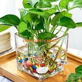 水培器皿玻璃花盆水養植物瓶透明花器綠蘿花瓶正方形容器【慢客生活】
