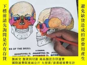 二手書博民逛書店THE罕見ANATOMY COLORING BOOK 英文版 品