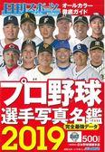 2019日本職棒選手寫真名鑑手冊
