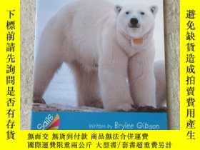 二手書博民逛書店Spying罕見on Animals(Sails Informa