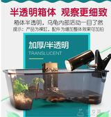 烏龜缸 烏龜缸小養龜盆特大號帶曬臺魚缸水陸缸烏龜塑料烏龜活體飼養盒箱 俏女孩
