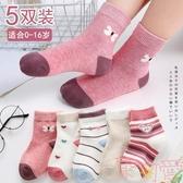 兒童襪子秋冬季純棉女童中筒襪襪寶寶加厚棉襪