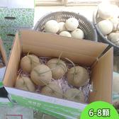 阿露斯洋香瓜-綠肉10公斤(6-8顆)