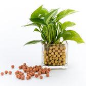 陶碳球 250g 紅褐色 負離子效果 無土栽培/水培/小盆栽/水族