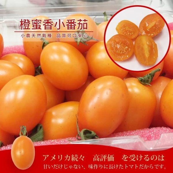 【果之蔬】黃金溫室橙蜜香小蕃茄X1盒 每盒300克