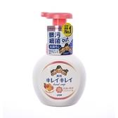 日本獅王趣淨洗手慕斯清新果香250ml