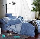 LUST生活寢具【奧地利天絲-藍菲】100%天絲、雙人5尺床包/枕套/舖棉被套組  TENCEL 萊賽爾纖維
