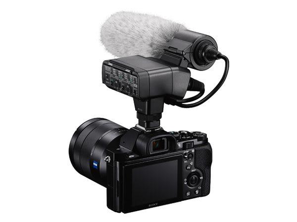 【震博】Sony XLR-K2M 高感度指向性麥克風 (分期0利率;台灣索尼公司貨)