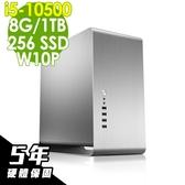 iStyle 雙碟商用電腦 i5-10500/8G/256SSD+1TB/W10P/五年保固